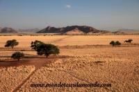 Désert de Namib (171).JPG