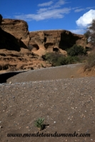 Désert de Namib (29).JPG