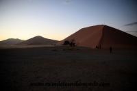Désert de Namib (65).JPG