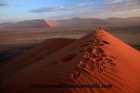 Désert de Namib (73).JPG