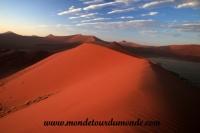 Désert de Namib (77).JPG