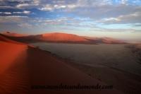 Désert de Namib (79).JPG