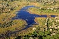 Okavango (13).JPG