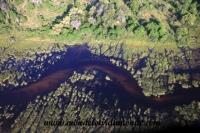 Okavango (16).JPG