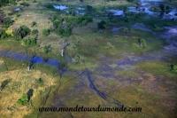 Okavango (19).JPG
