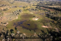 Okavango (22).JPG