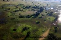 Okavango (28).JPG