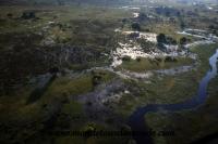 Okavango (37).JPG