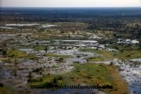 Okavango (39).JPG