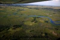 Okavango (43).JPG