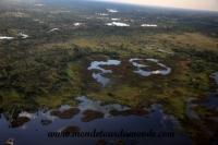 Okavango (51).JPG