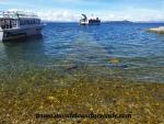 Lac Titicaca (115).JPG