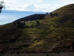 Lac Titicaca (99).JPG