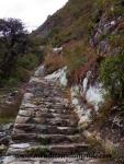 Machu Picchu (54).JPG